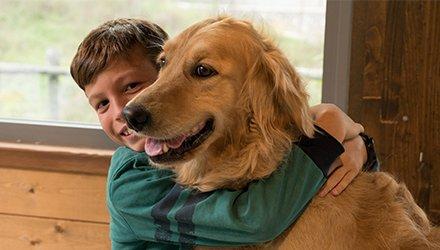 bambino abbraccia cane con divertimento